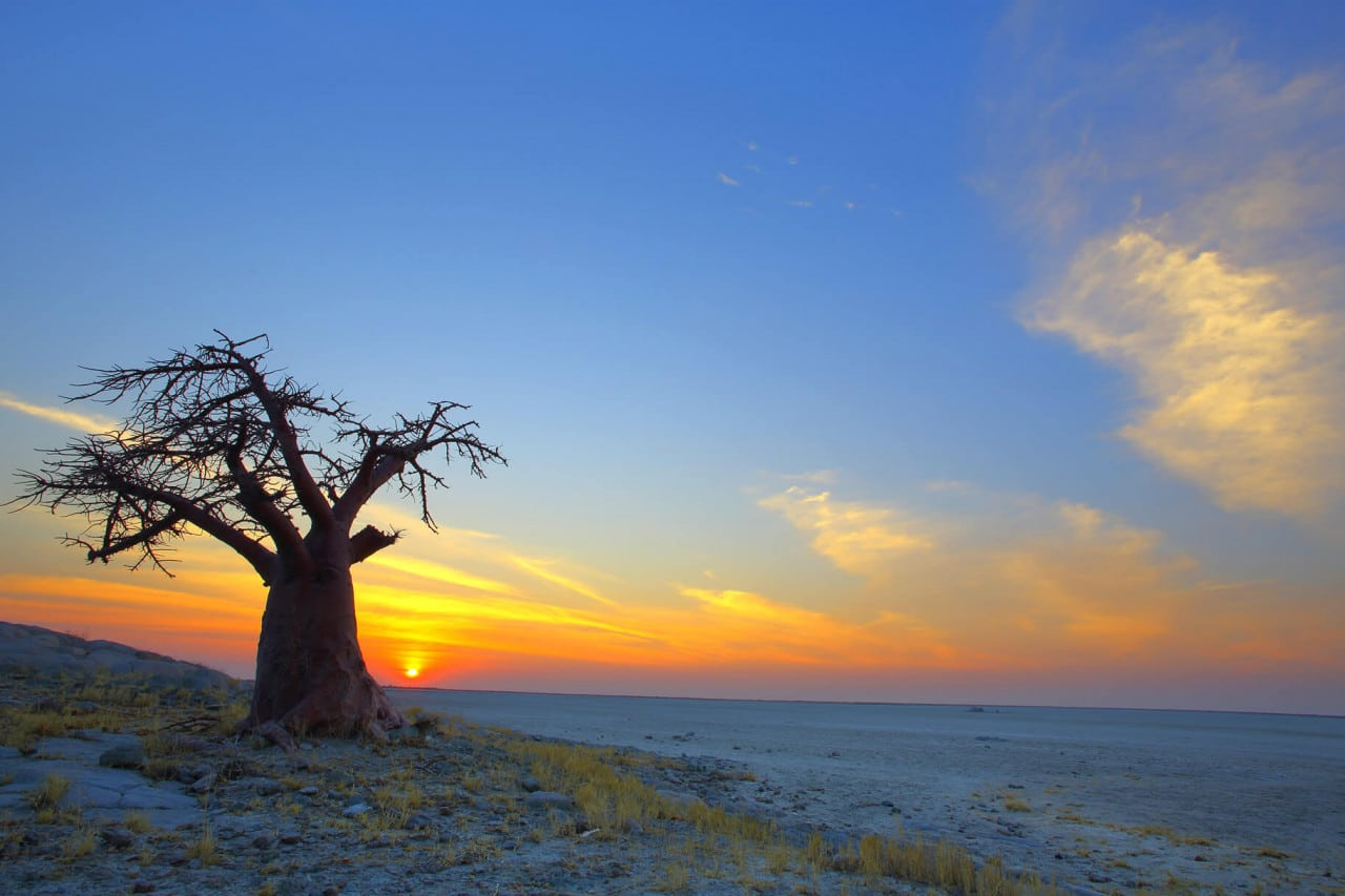 Happy Independence Day to Botswana